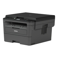 Brother DCP-L2530DW (DCPL2530DWG1)