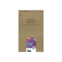 Epson T0807 Easy Mail Packaging (C13T08074510)